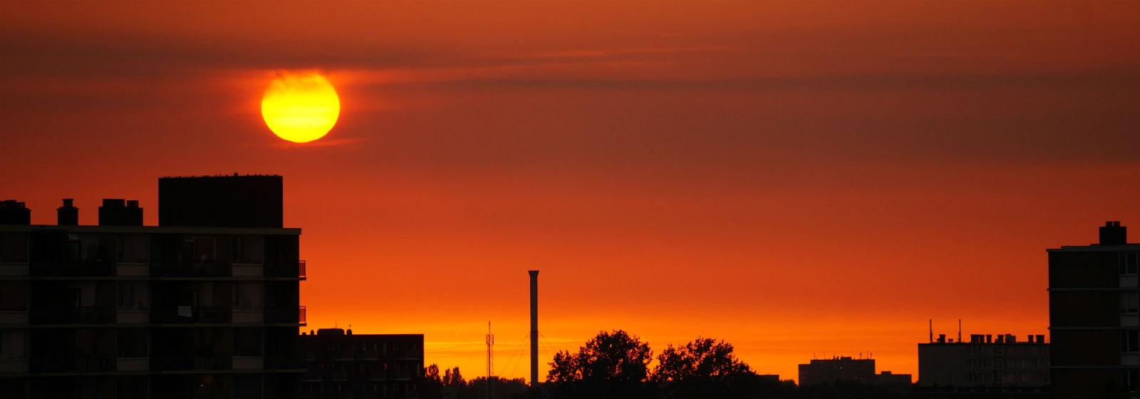 Uitzicht-Grasboom-Utrecht-Max-in-de-avond Foto Anne van de Beek